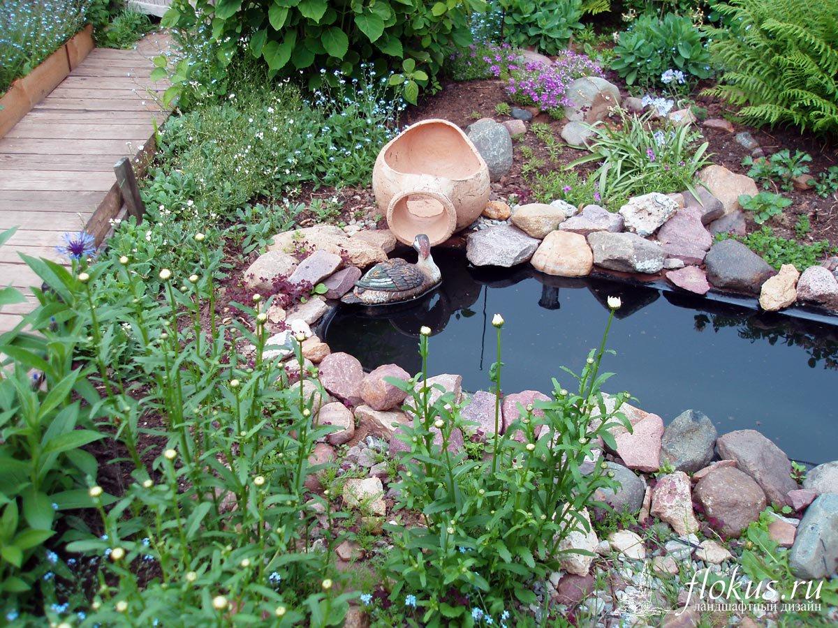Как сделать пруд из болота своими руками 54