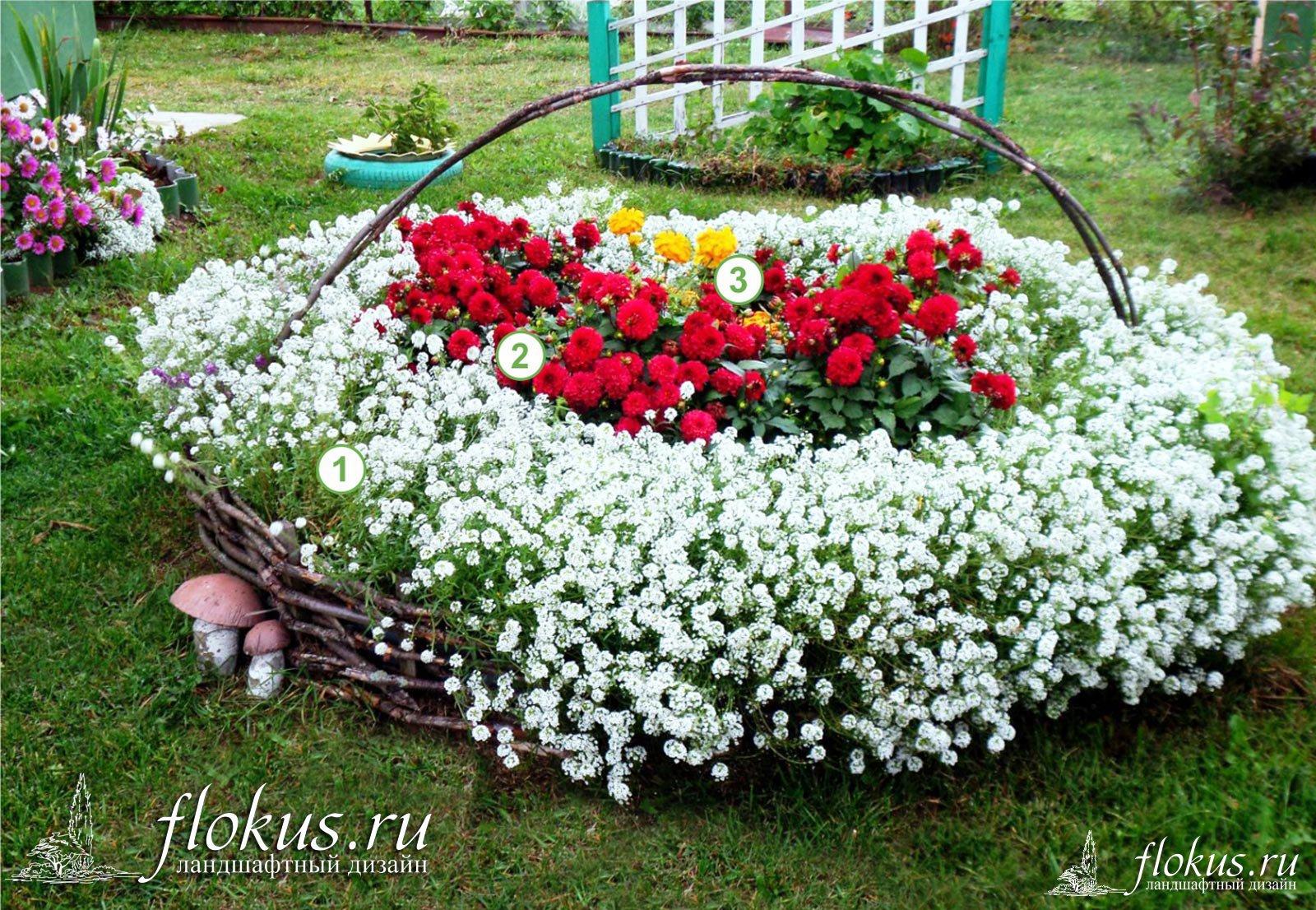 Цветник  для новичка