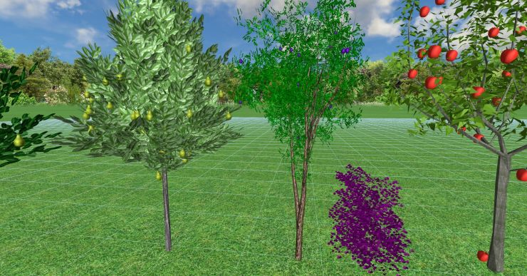 3d модель сливы для Realtime landscaping architect